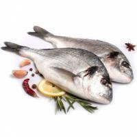 Охлажденная и переработанная рыбная продукция