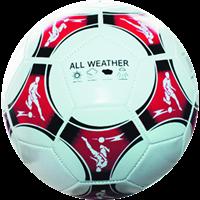 Мяч ACTICO футбольный, р.5, ПВХ 2 сл. GFSP28-SC